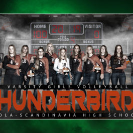 Team Banners 1